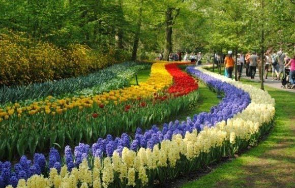 باغ اروپا ,بزرگترین باغ جهان