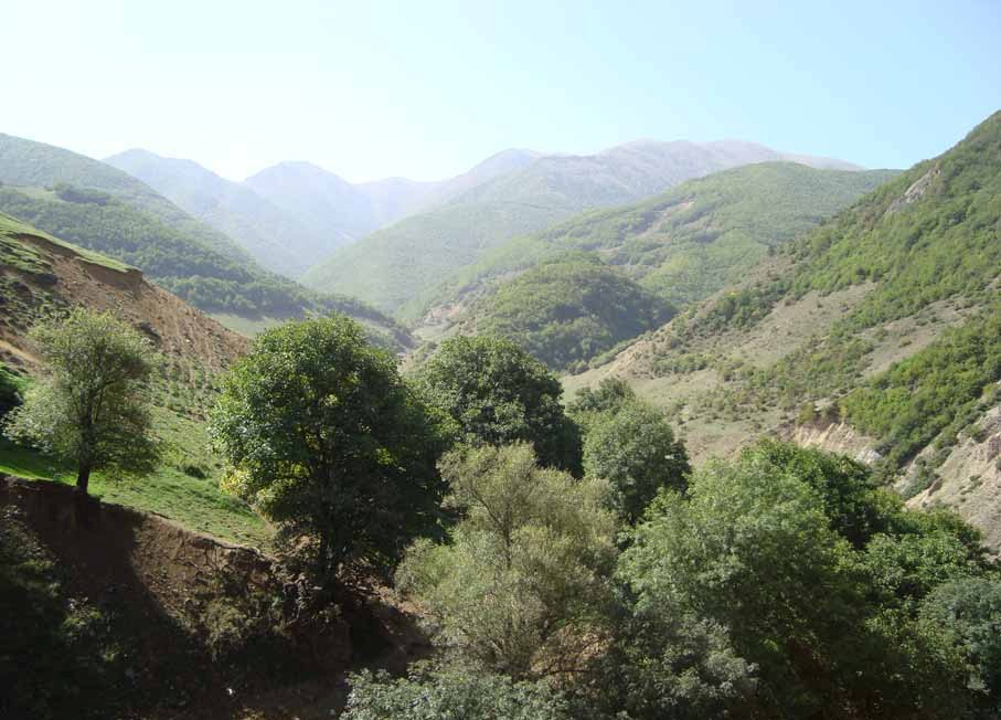 سفر به کرینگان , روستایی در دل جنگلهای بکر و و دست نخورد