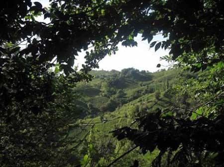 لیلاکوه یک منطقه گردشگری زیبای گیلان