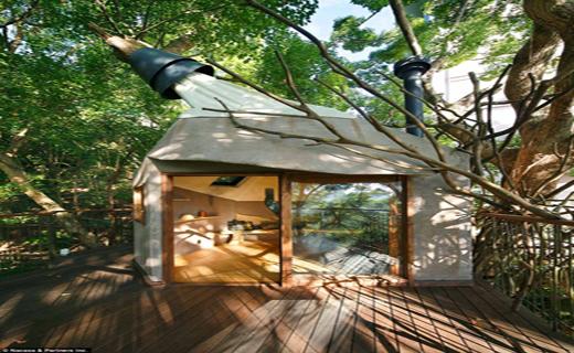 خانه درختی مدرن