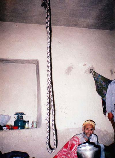 ترکمن ها و آیین پرخوانی در میان آنها چگونه است