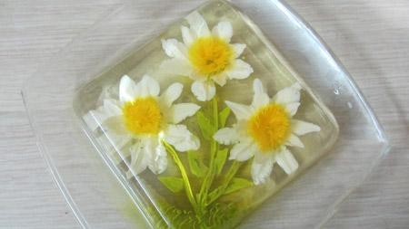 مدل تزیین ژله تزریقی گلدار