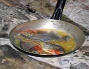 چند روش پخت و پز ساده در سفر