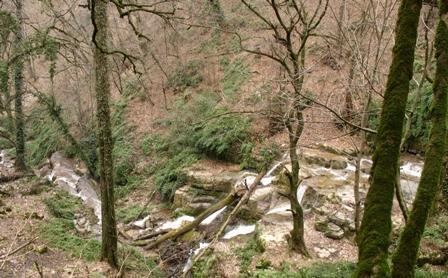 طبیعت فوق العاده بکر و سرسبزدر آبشار زیبا و دیدنی جوزک