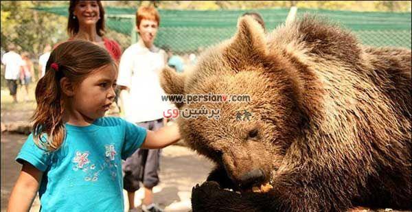 عکس های جنجالی از یک باغ وحش دیدنی در آرژانتین