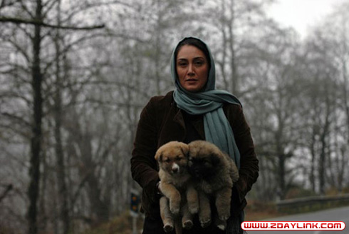 بازیگران سینما ایران و بازی با حیوانات خانگی شان !  عکس