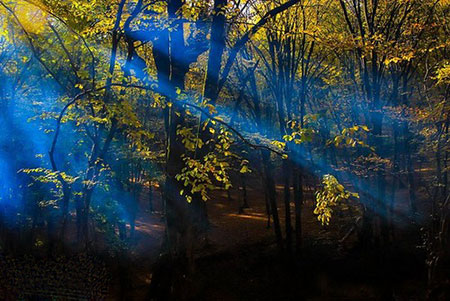 پارک جنگلی النگدره گرگان
