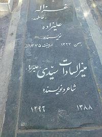 غزاله علیزاده نویسنده کشورمان از زندگی تا مرگ بر او چه گذشت