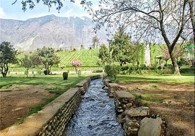 آشنایی با باغ زیبای هارون در کشمیر  تصاویر