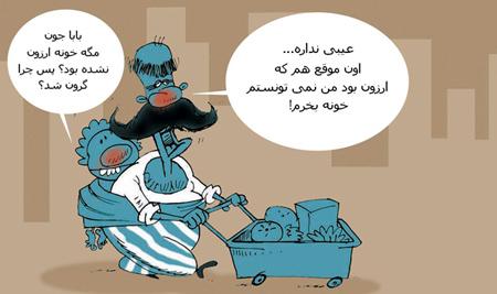 کاریکاتور افزایش قیمت مسکن