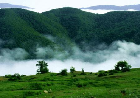 جنگل 190 میلیون ساله ایران را ببینید تصاویر