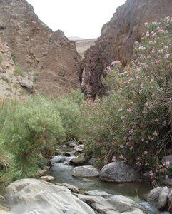 آبشارهای دره سختی جاذبه ای متفاوت در کرمان