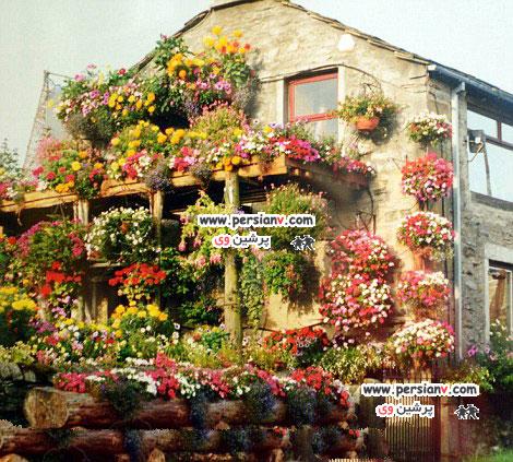 خانه باغچه ای یک زوج خوش ذوق  عکس