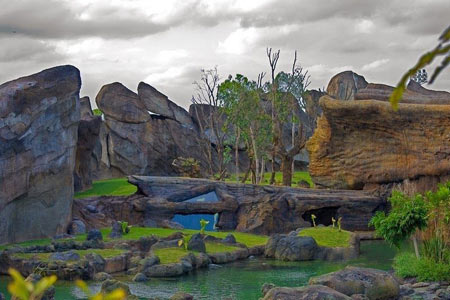 باغ وحش استثنایی در والنسیا ( عکس)