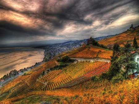 لاواکس نام منطقه ای زیبا در کشور سوئیس تصاویر