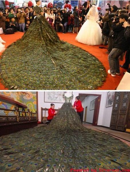 گرانترین لباس عروس دنیا از پرهای طاووس  عکس