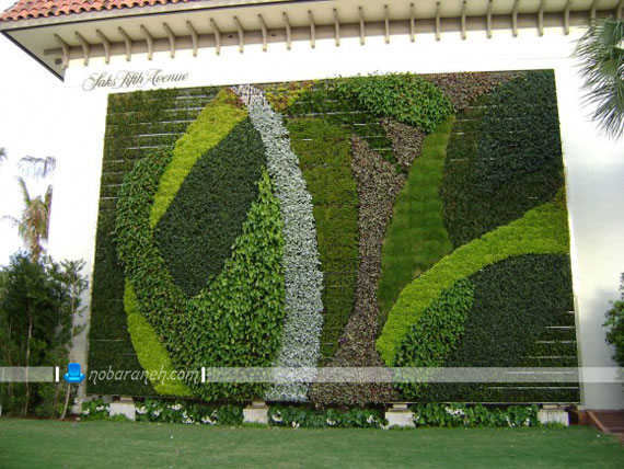 تزئین نمای بیرونی و دیوار خارجی ساختمان با گیاهان چسبیده