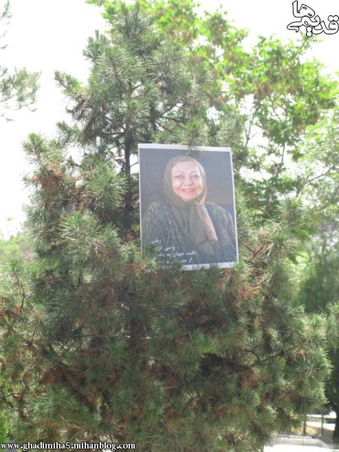 مراسم اولین سال درگذشت نادره با حضور هنرمندان  عکس