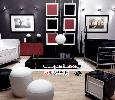 دکوراسیون منزل با رنگ های سیاه و سفید  عکس